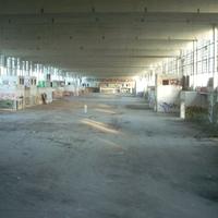 Urbex: Nagyvásártelep