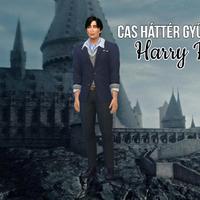 The Sims 4: CAS háttér gyűjtemény VI. - Harry Potter