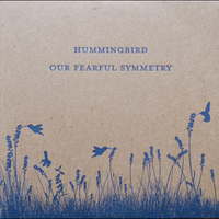 Hummingbird: Our Fearful Symmetry