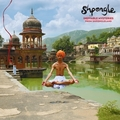 Shpongle: Ineffable Mysteries From Shpongleland
