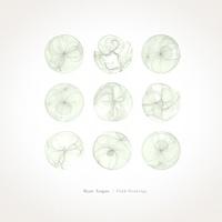 Ryan Teague - Field Drawings (200px).jpeg