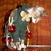 macskarácsony, szfinxkarácsony..... fa