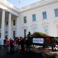Obama családja várta a karácsonyfát ...