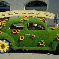 Fű-zöld kocsik...
