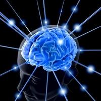 Az agyad