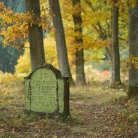 Mert csak az élők sírnak, búsak,A temetők mind koszorúsak...