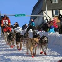 Indul a nagy alaszkai kutyaszánverseny...
