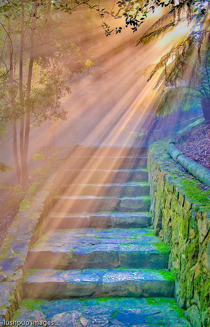 …I saw before me a golden curtain and I climbed the stairs as if in a dream… (by Geoff…)