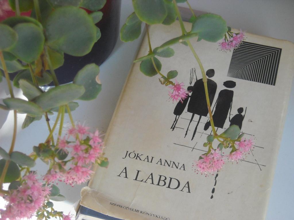 a_labda_009.jpg