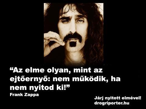 zappa_drogriporter.jpg