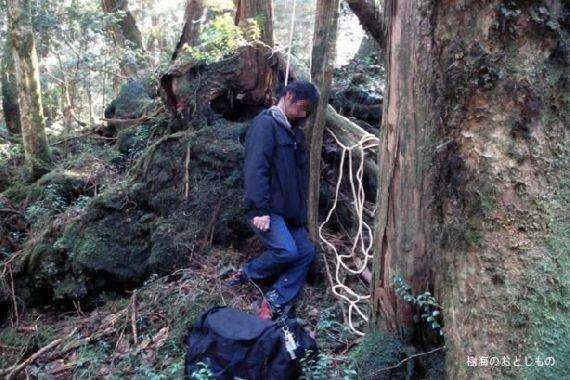aokigahara-forest16.jpg