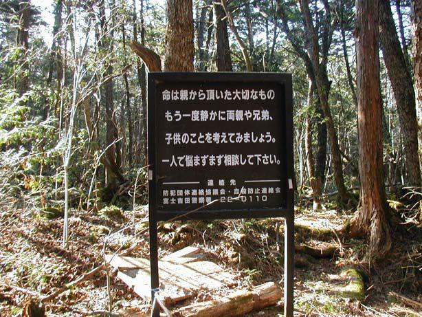aokigahara_02.jpg
