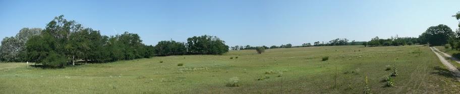 Panorama 4 (1).JPG