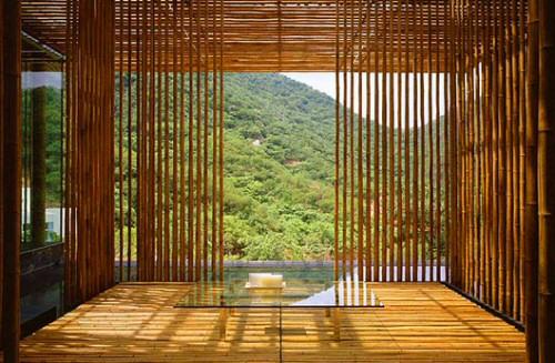 bambusz2.jpg