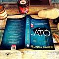 Belinda Bauer: A látó