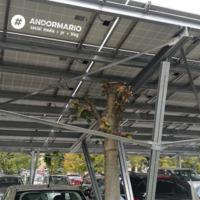 Magyar abszurd: egy pesti kórház udvarán napelemek alatt nőnek a fák