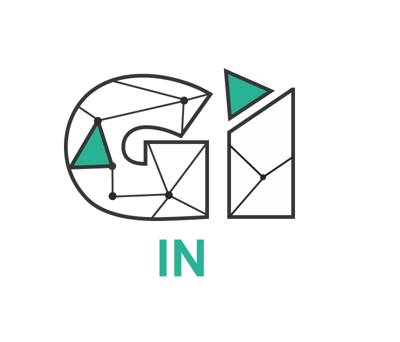 geoinsight.png
