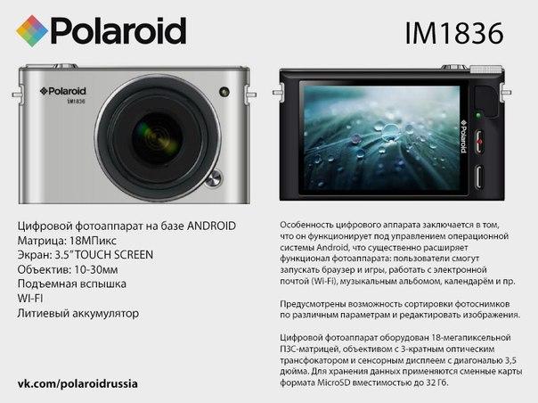 Polaroid-IM1836.jpeg
