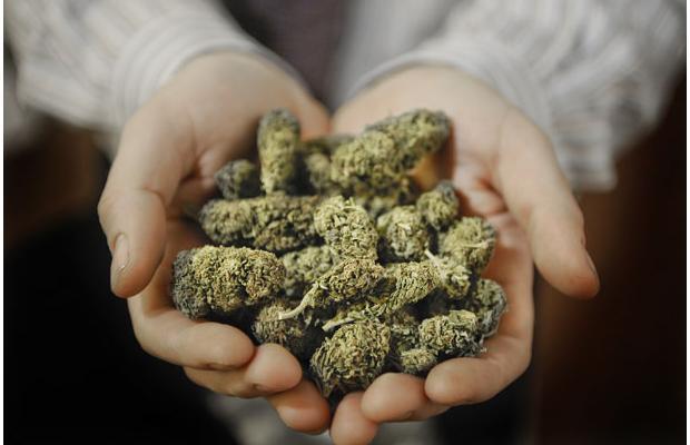 marihuana_133.jpeg