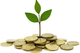 Pénz vagy kapcsolati tőke?