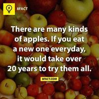 Apple, azaz almás kifejezések