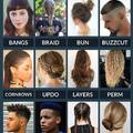 Types of Hairstyles / Hajtípusok