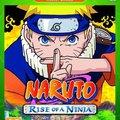Naruto: Rise of a Ninja kritika.