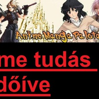 Anime Manga Palota kérdőív: Saját kitöltés