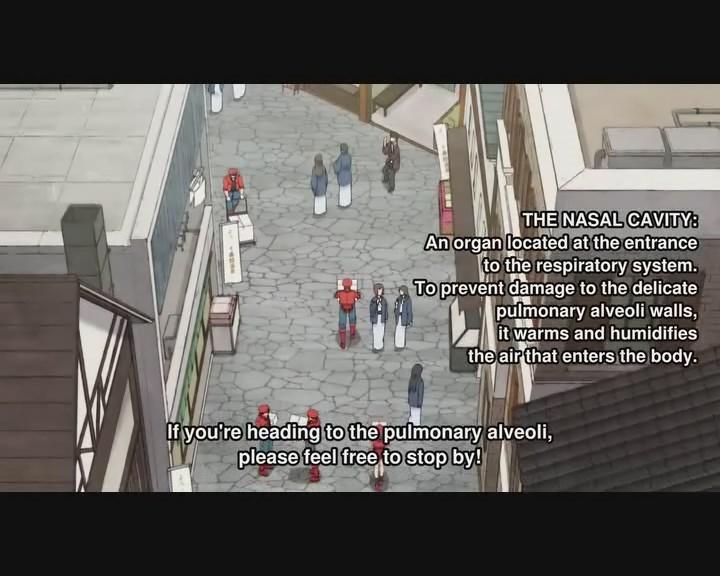 watch_hataraku_saibou_tv_episode_10_online_free_kissanime_0001.jpg