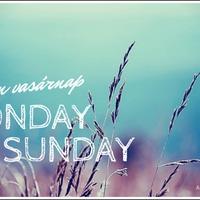Monday to Sunday #8