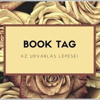 Book Tag Friday #7 - Udvarlós book tag