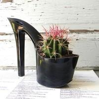 Te ültetnél kaktuszt a cipődbe?