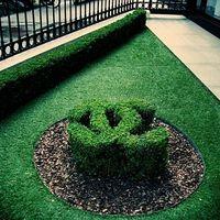 A Chanel a kertben legel és a homlokodra lehel