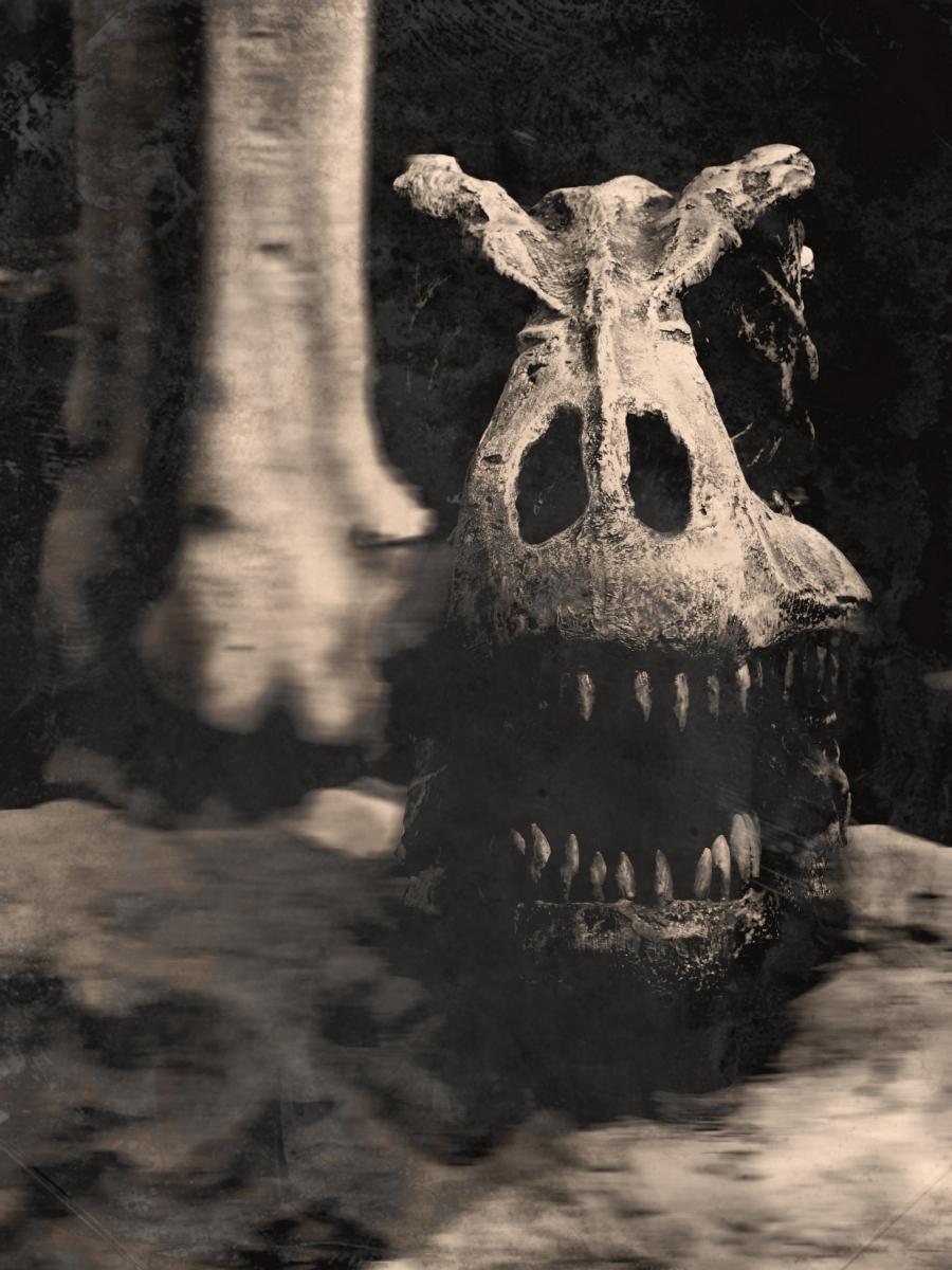 'Dinoszaurusz csontok' a Rezinél található Dínó- és Kalandparkból