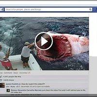 Megtévesztések és álhírek terepe a Facebook