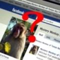 Kártékony tartalmak szűrése a Facebook-on