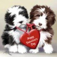 Valentin napi kártevők