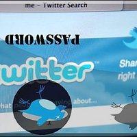 Csak technikai hiba volt a Twitteres jelszó reset