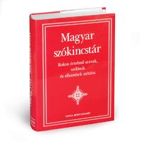 A Magyar szókincstár amerikai fogadtatása