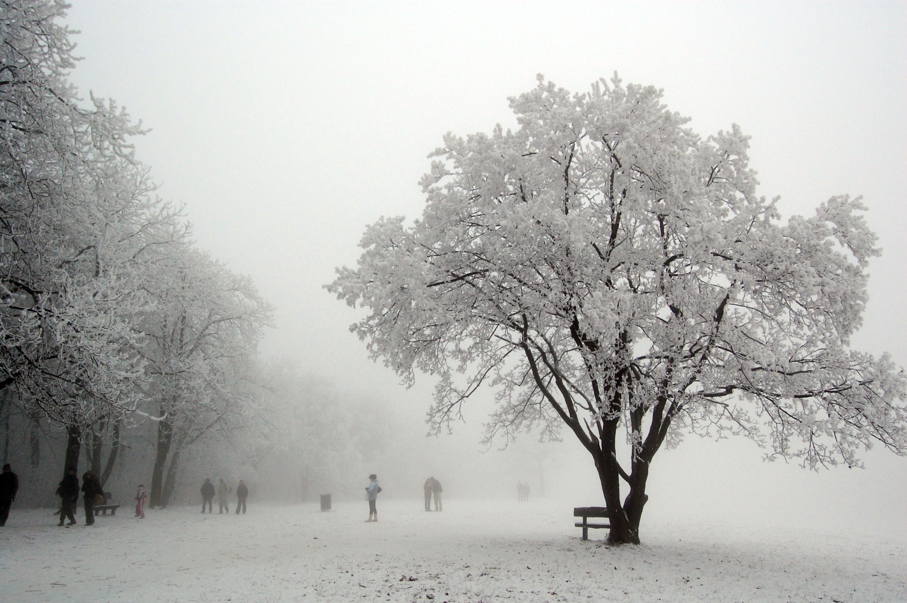 winter-in-budapest-hungary.jpg