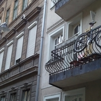 Canga a magasban (Mária utca 13.)