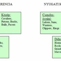 Miben különbözik vagy éppen hasonlít a magyar és az amerikai?
