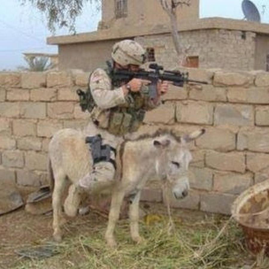 soldier-on-donkey-funny-transportation-photo-for-facebook.jpg