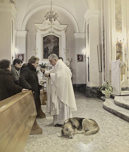 dog-mass3.jpg