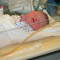 Megszületik a másik unokatestvérem, Bendegúz