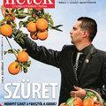 Szüret - Hetek címlap