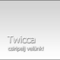 A ház ajánlata: Twicca - a dögös fekete