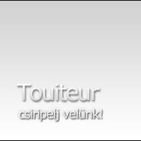 Twitter kliens körkép: Touiteur