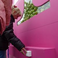 Mi lenne, ha almák helyett iPhone-okat osztogattak volna az Erzsébet téren?