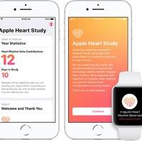 Az Apple legújabb tanulmányával szívbetegeket gyógyítana